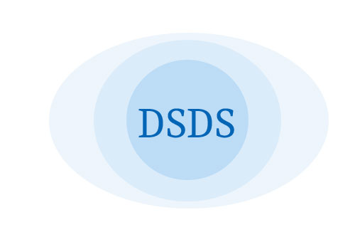 DSDS 2017: Quotenfiasko für Bling-Bling Karaokeshow