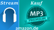 Download des Songs bei Amazon suchen